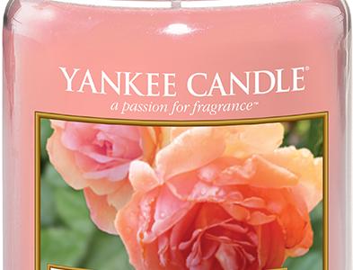 Yankee Candle 1577126E