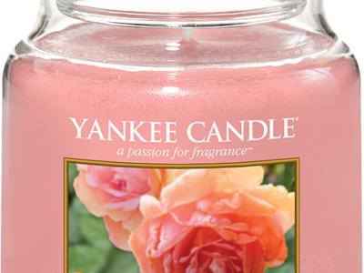 Yankee Candle 1577134E